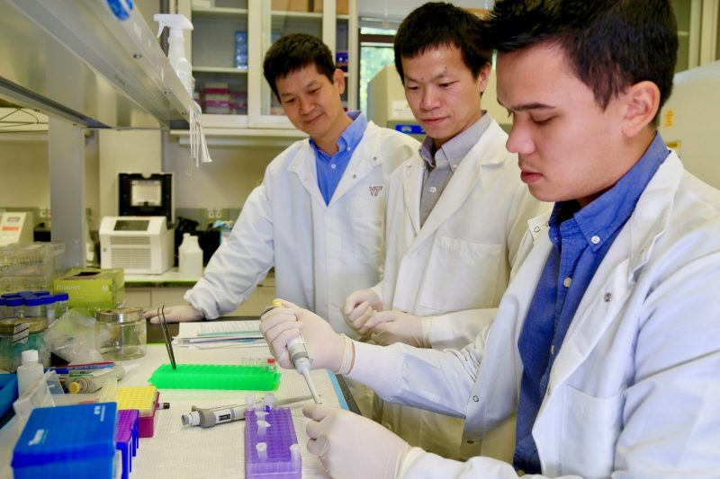 "(from left to right) Hehuang ""David"" Xie, associate professor in the Department of Biomedical Sciences and Pathobiology in the Virginia-Maryland College of Veterinary Medicine; Xiguang Xu, graduate student; Alexander Murray, graduate student."